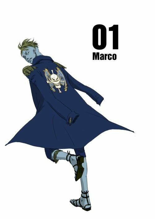 One Piece one shots  - Neko! Reader x Marco  Scream  - Wattpad