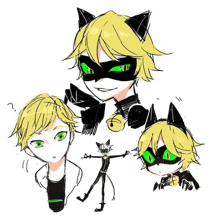 male reader x adrienchat noir  miraculous lady bug