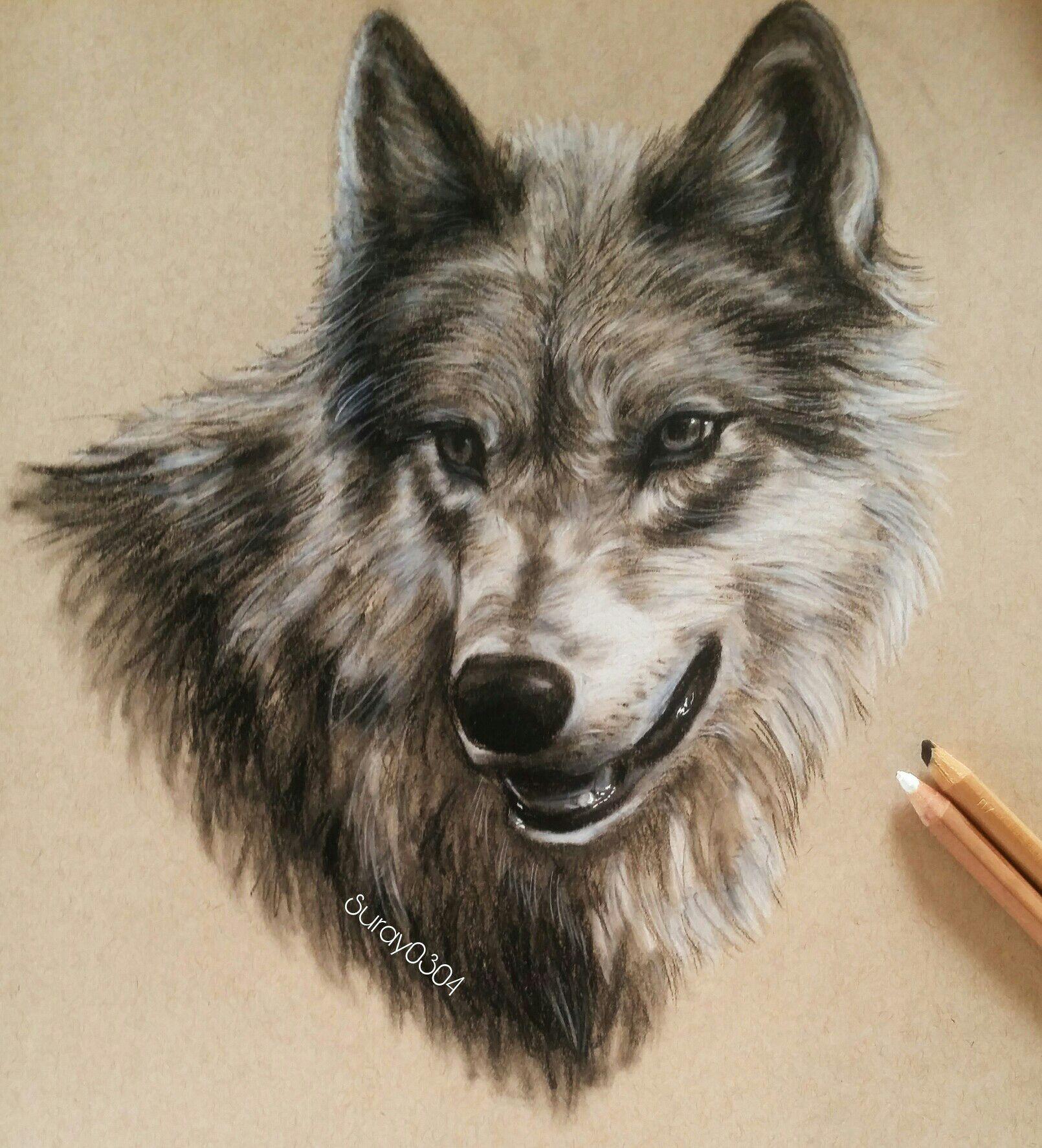 Meine Zeichnungen Der Weg Zum Kunststudium Wolf Mit Pastell