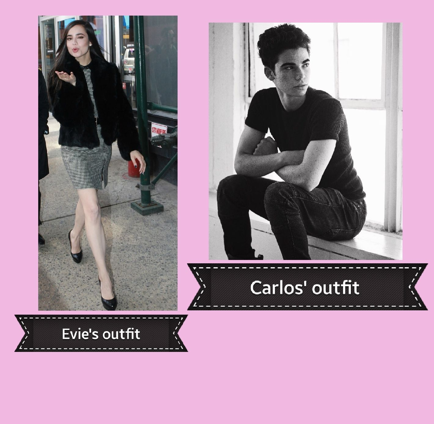 The Bad Boy (carvie) Evie And Carlos Fanfiction