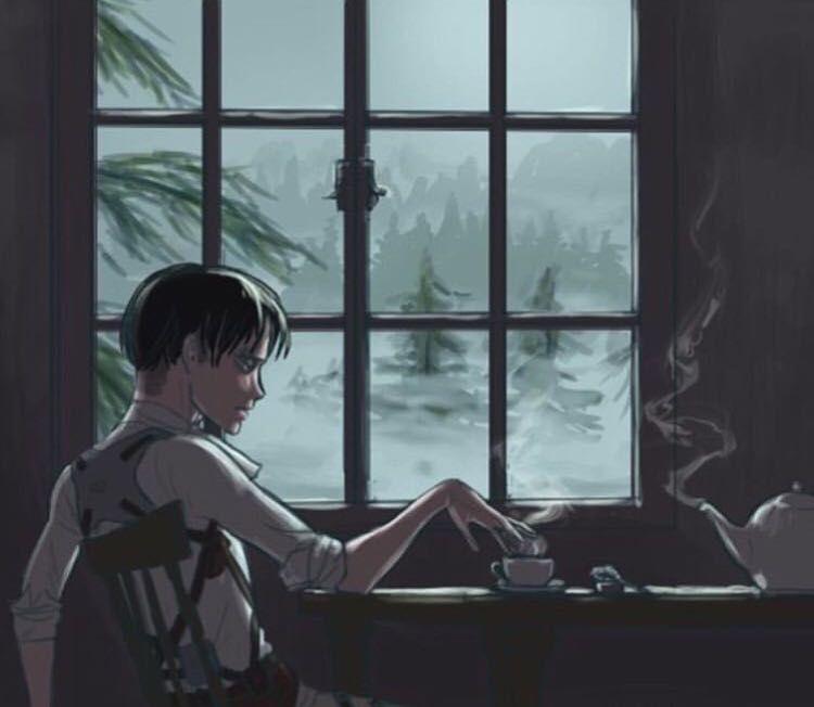 Levi Ackerman x Reader Oneshots』 - Beautiful   Levi x Insecure