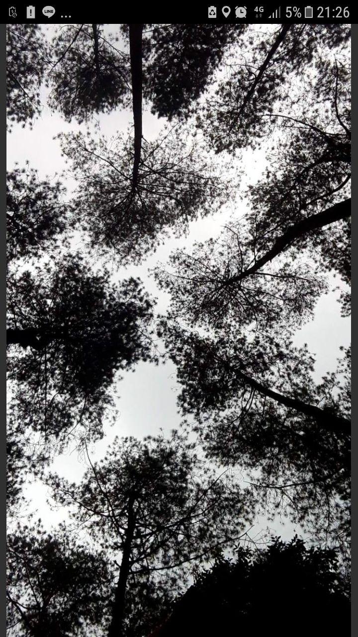 73 Gambar Abstrak Galau Terbaik
