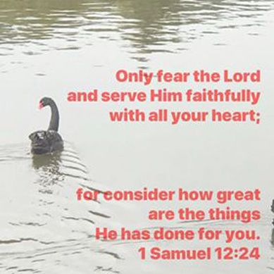 Bible Verse Images and Poems - Part 11 - Why Serve God