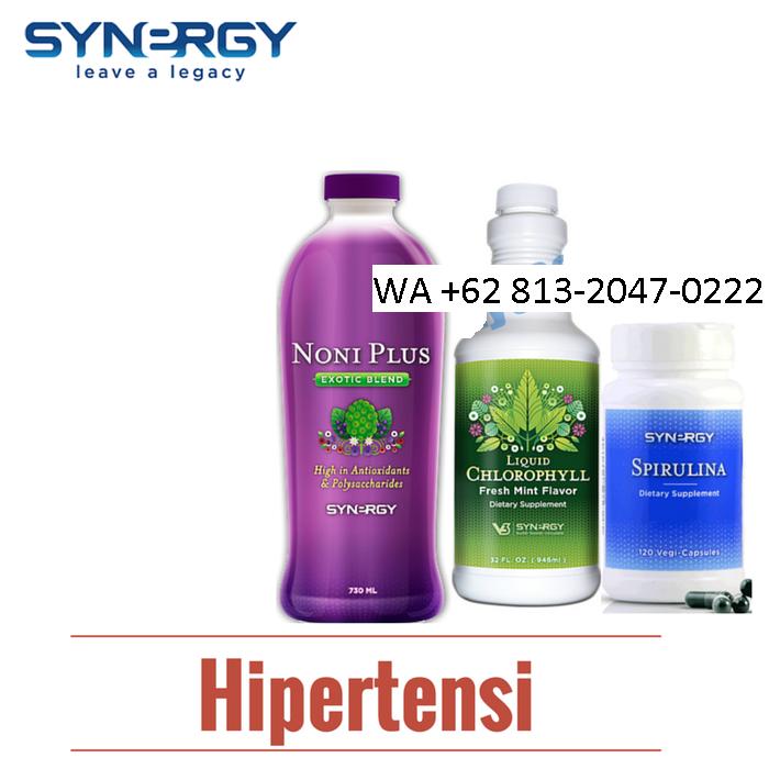 Obat Hipertensi Alami Smart Detox Di Makassar Wa 62 813 2047 0222