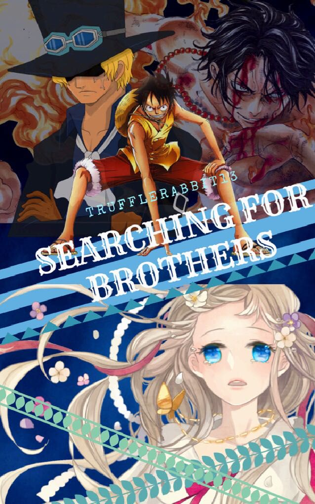 Searching for Brothers [One Piece fanfic] - Chapter XXV
