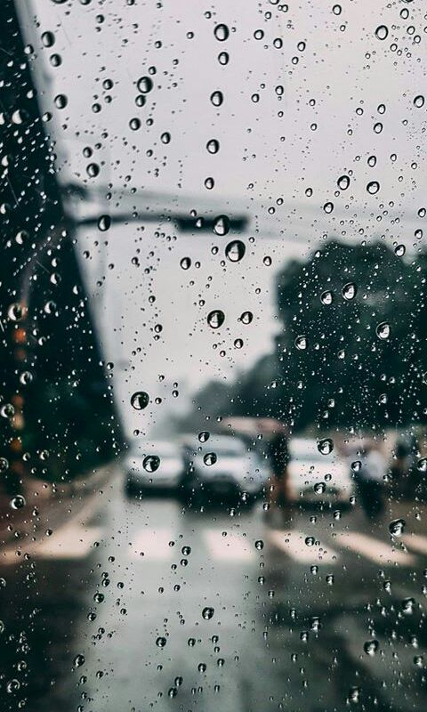 memoar rasa hujan bulan desember wattpad