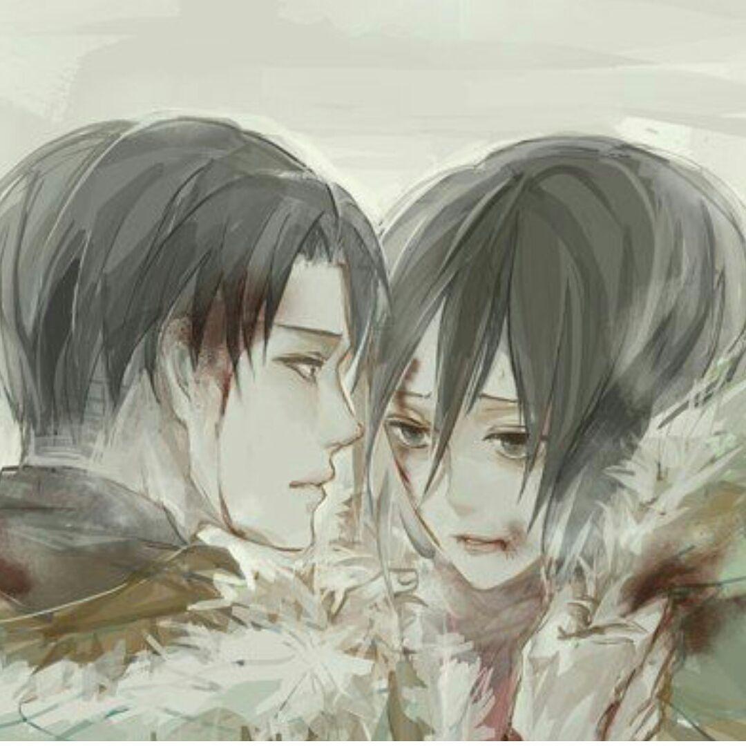 T.1 Chagrins Infinis (Livai X Mikasa)