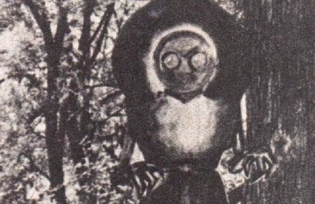 Folklore, Spirits, and Urban Legends of WV  - Flatwoods