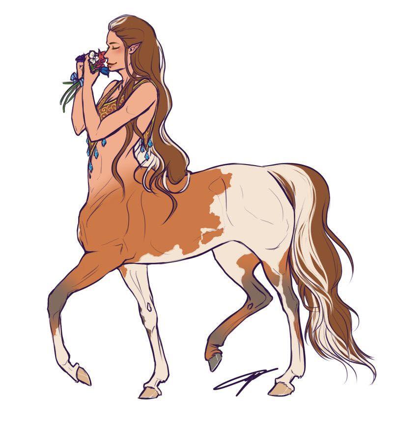 The Magical Creature Handbook - Centaur - Wattpad