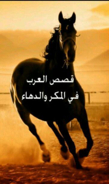 كتاب قصص العرب في المكر والدهاء