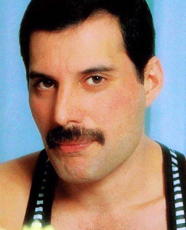 15+ Freddie Mercury Moustache
