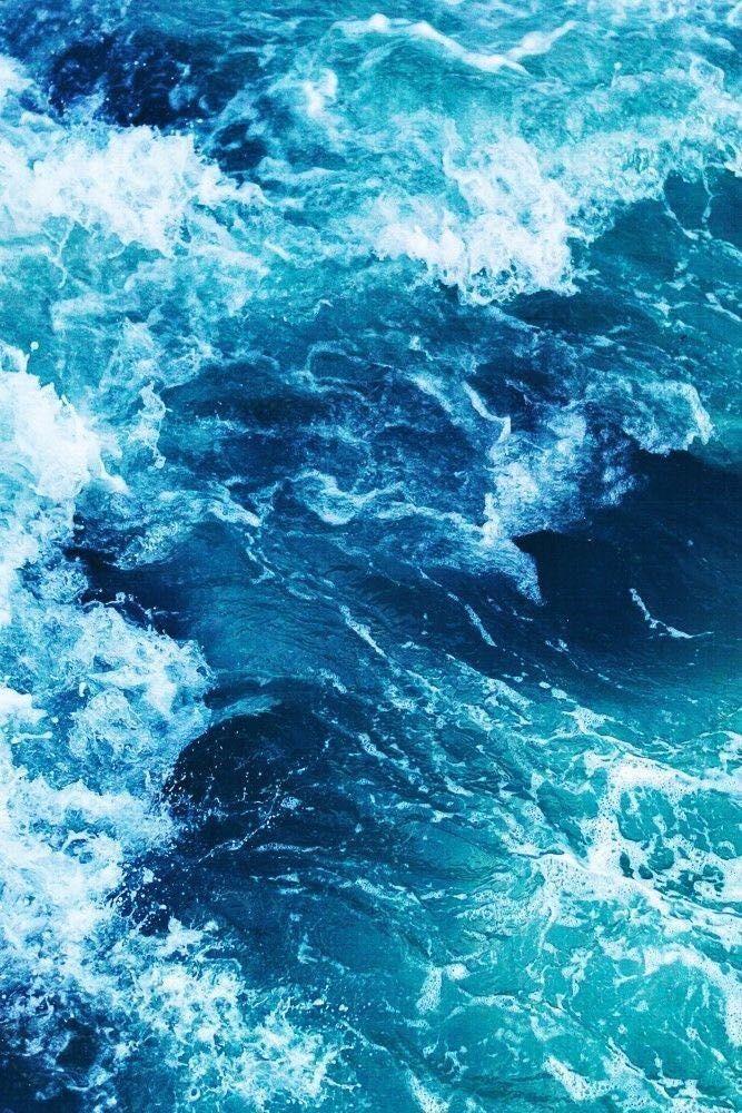 Exponentia Liber // poetry - Italian fish - Wattpad