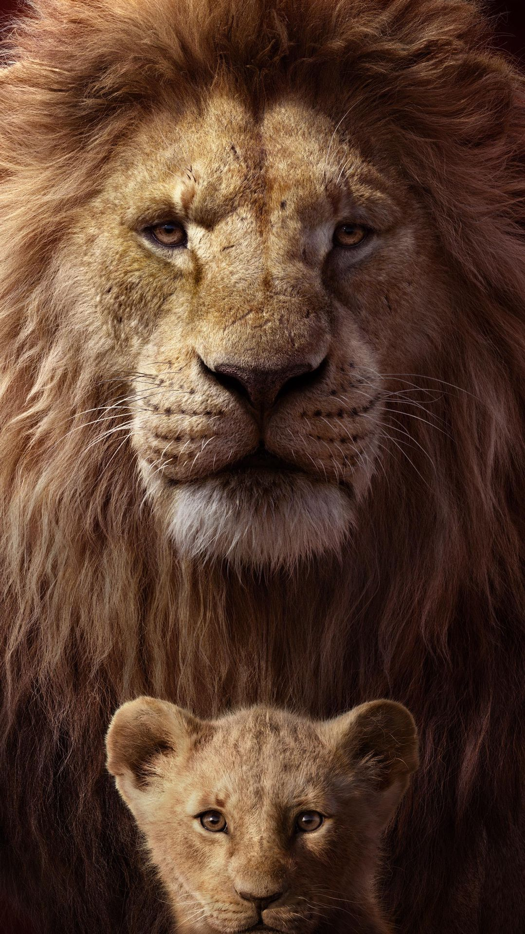 watch the lion king  2019  full movie online on 123movies