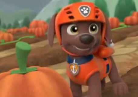 Paw Patrol Campus Life Chapter 5 Zuma Gets Stoned