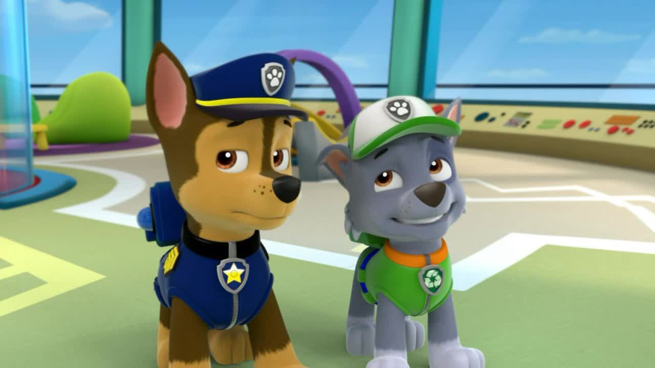 Paw Patrol Campus Life Chapter 28 Hated Wattpad