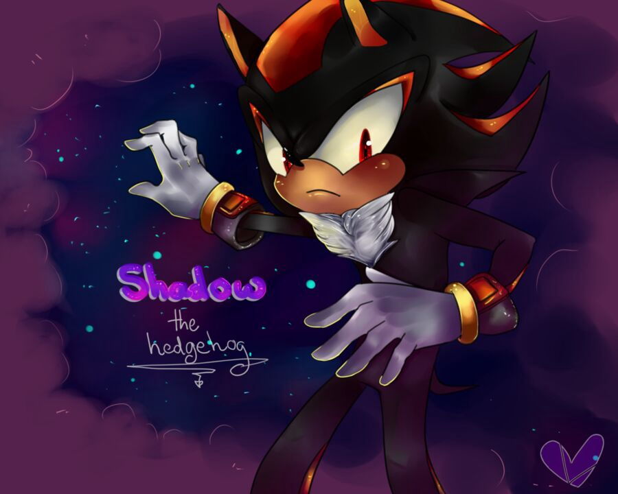 Shadow The Hedgehog x Reader One-Shots - birthday special