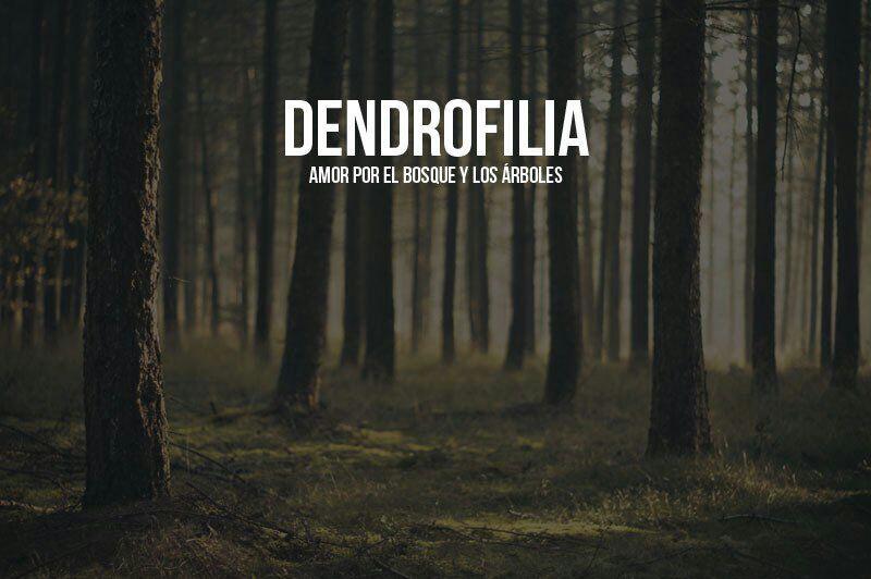 Palabras desconocidas dendrofilia wattpad for Tipos de arboles y su significado