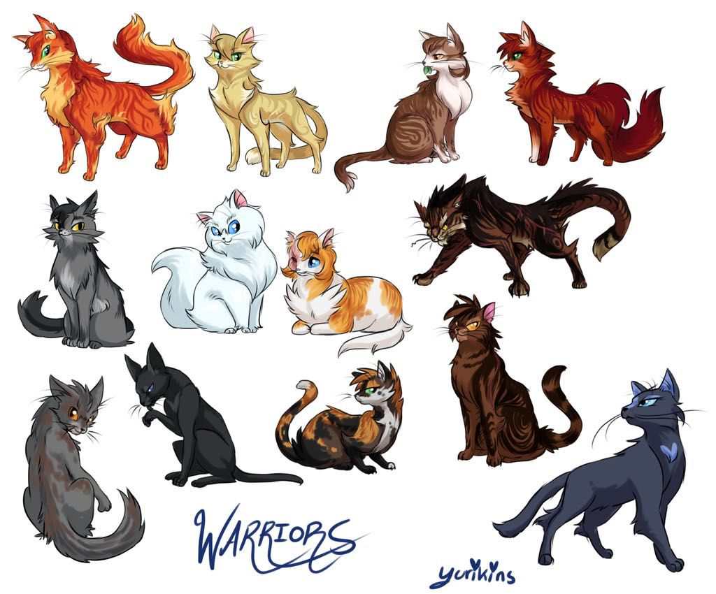Funny Warrior Cats Names