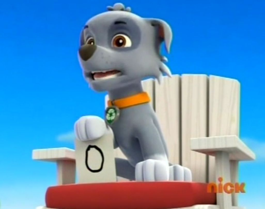 Paw Patrol: Campus Life - Chapter 32: Confusion - Wattpad