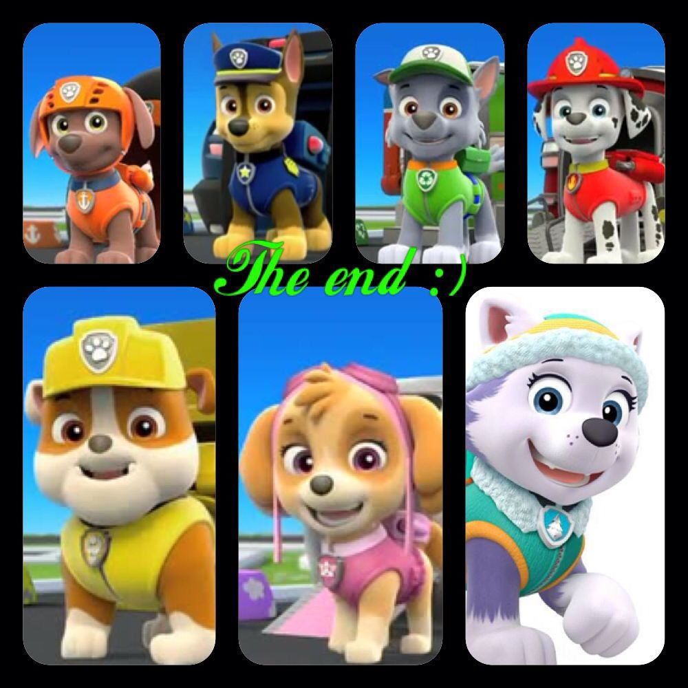 Paw Patrol: Campus Life - Chapter 45: Redoing the Lookout/FINAL