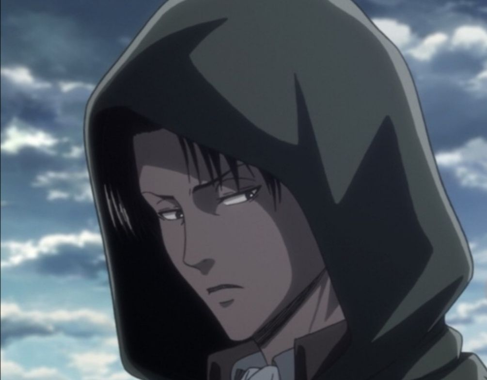 Attack On Titan Gif Memes Pictures Wallpapers Levi Ackerman Wattpad