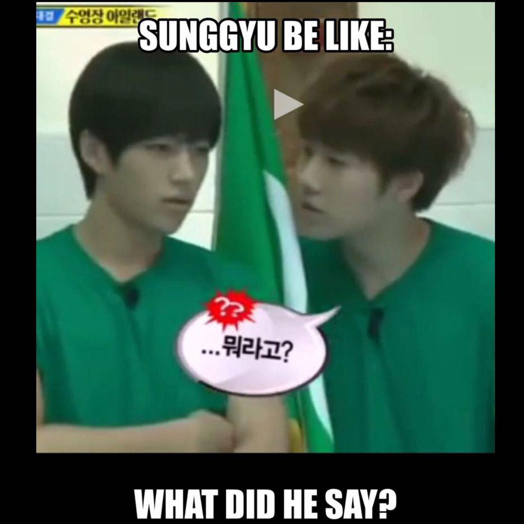 KPop Memes  Infinite Meme~Sunggyu Be Like  Wattpad