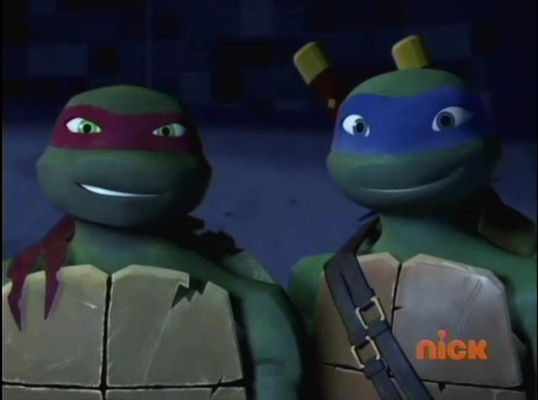Teenage Mutant Ninja Turtles Leo And Raph